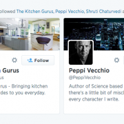 Example of spam auto-follow on Twitter 2