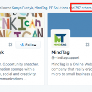 Image of spam auto-following on Twitter